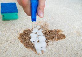 Giặt thảm khô là hình thức giặt thảm không sử dụng nước