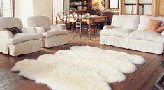 Hướng dẫn cách giặt thảm lông cừu hiệu quả