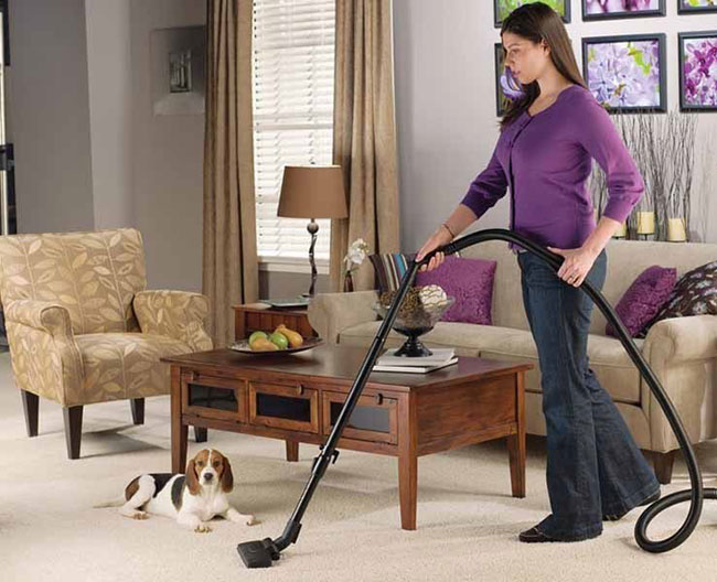Thường xuyên vệ sinh và dọn dẹp nhà cửa