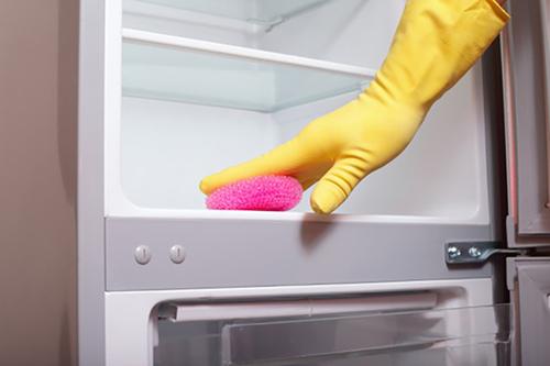 Lau chùi tủ lạnh để thức ăn tươi lâu hơn