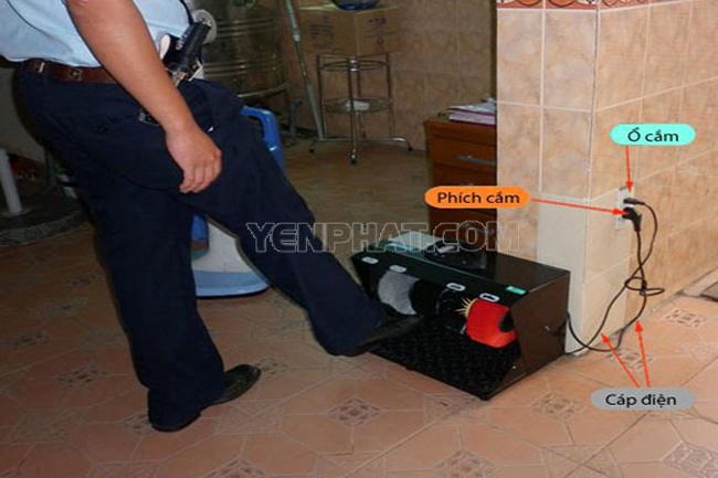 Máy đánh giày có công tắc tắt mở