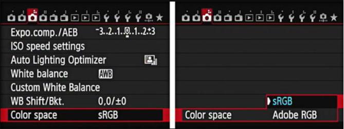 Cài đặt hệ màu của máy ảnh Canon