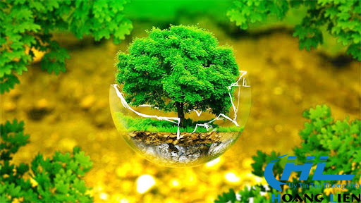 môi trường xung quanh chúng ta