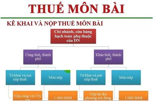 Thuế môn bài phân chia các nhánh