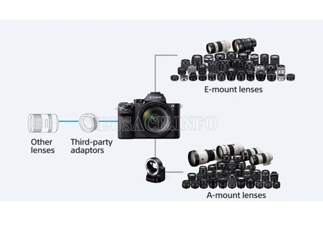 các loại ống kính máy ảnh ống kính rời