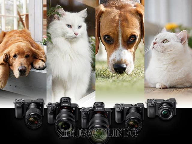 máy ảnh kỹ thuật số 1