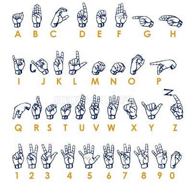 Hệ thống ngôn ngữ ký hiệu