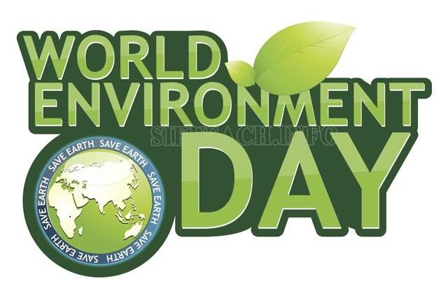 Hoạt động và mục đích của ngày môi trường thế giới là gì?