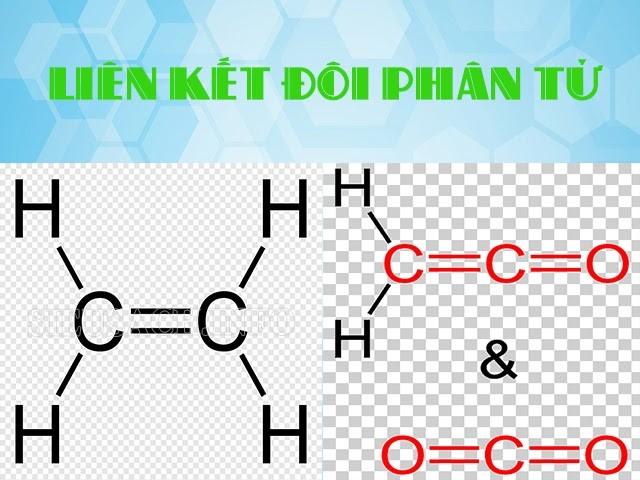 Các nguyên tử chia sẻ cặp electron với nhau trong liên kết đơn