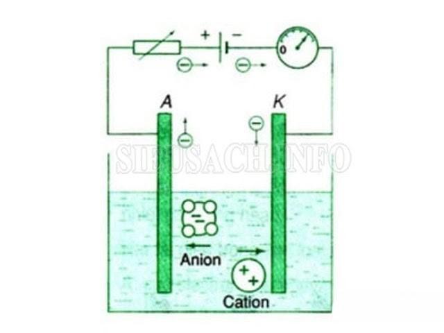 Dòng điện trong chất điện phân