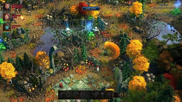 Druidstone: Secret of the Menhir Forest