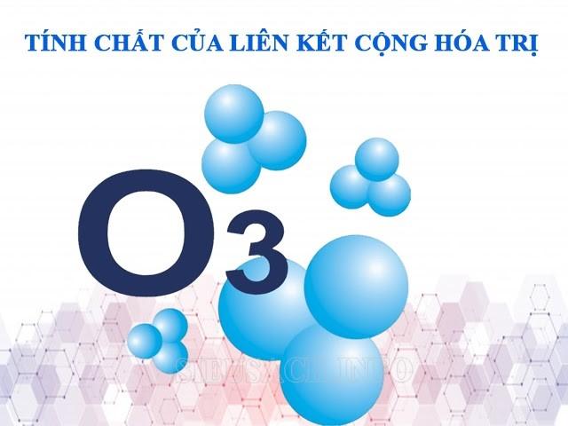Liên kết phân tử có những tính chất gì?