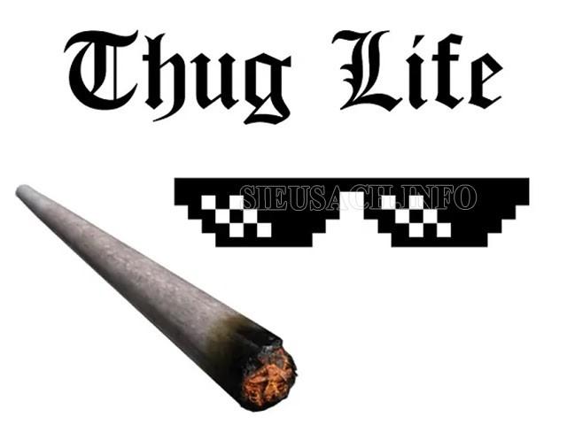 Thug life thường được sử dụng trong hoàn cảnh nào?