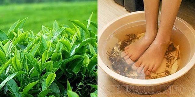 Mỗi ngày bạn có thể ngâm chân bằng trà xanh trong khoảng 15 phút